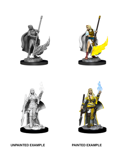 Female Human Oracle: Pathfinder Battles Unpainted Miniatures